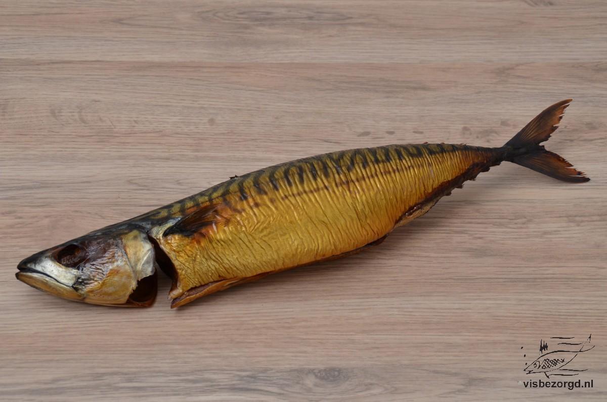 Makreel gestoomd heel